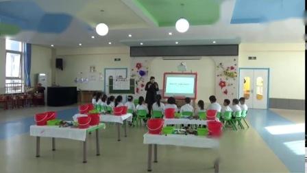 大班科学《让硬币浮起来》-幼教优质课(2020年)
