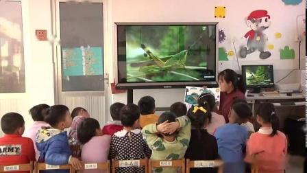 大班科学活动《动物保护色》-幼教优质课(2020年)