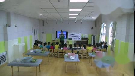 大班科学活动《让硬币浮起来》-幼教优质课(2020年)