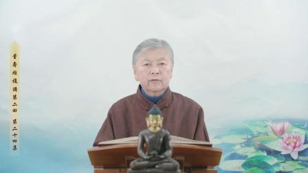刘素云老师第二回复讲《无量寿经》第二十四集 高清(480p)