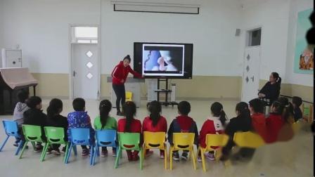 大班科学活动《我从哪里来》-幼教优质课(2020年)