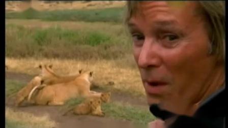 自然密码20110102-监视猛狮