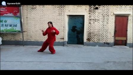 傅传杨式传统太极拳28式:王希红(17)