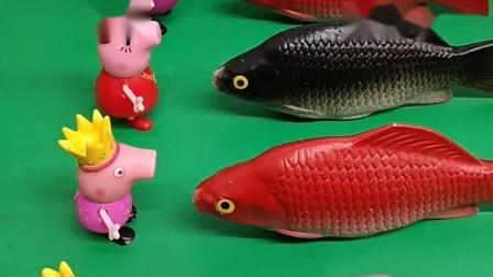 小猪佩奇家养了好几条鱼,都非常的可爱呢,乔治很喜欢呀