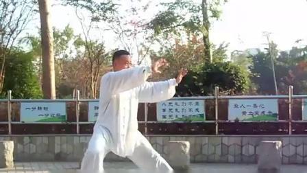 8式16式24式太极拳练习