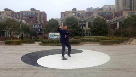 杨建平—陈氏太极拳老架一路最新教学示范