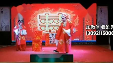淮剧《柳燕娘》选段 演唱:宋国珍 王国俊