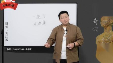刘红云0基础学董氏奇穴之胯骨疼(1)
