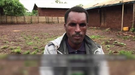 埃塞俄比亚:努力耕作的一天从一杯咖啡开始