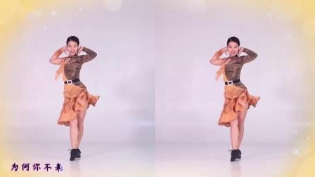 糖豆广场舞《为何你不来》