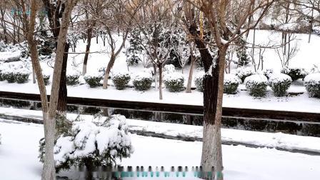 瑞雪迎春《伤心的雪花》美丽的童话世界