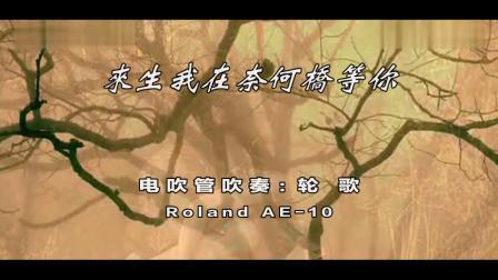 《来生我在奈何桥等你》电吹管吹奏【Roland AE-10】