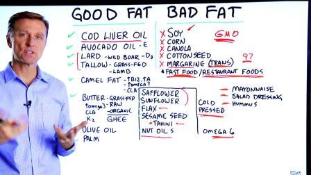 好脂肪vs坏脂肪 (by Dr.Berg)