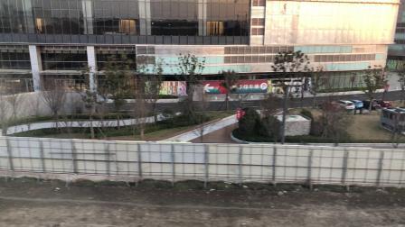 06059号车(洲海路-外高桥保税区南站)