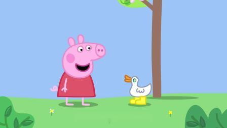 佩奇一家出门寻找鸭妈妈