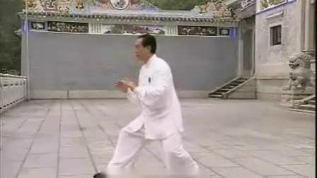 85式杨式太极拳正面带口令演练(赵幼斌)