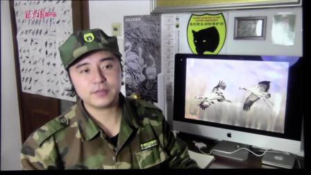 黑豹野生动物保护站 北京日报 视频千鹤图.mov