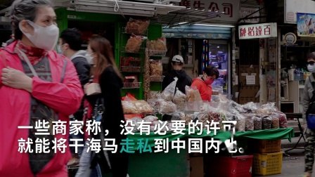 暗访:九龙旺角海产干货店