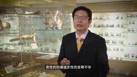 采访:张世平,香港浸会大学中医药学院副教授