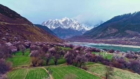 Lost in Tibet《迷失在西藏》