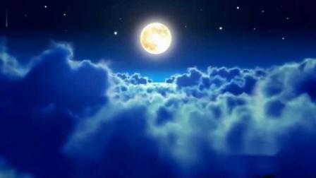 赵丽娜--我陪月亮等你