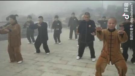 林坚文化园太极拳协会