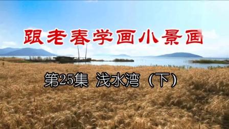 热播国画入门教程 跟老春学国画视频25浅水湾(下)