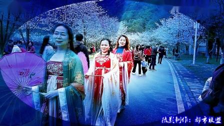 黄石第六届2021磁湖樱花节