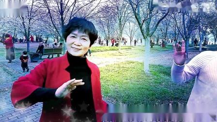 黄石第六届2021磁湖樱花节《亲爱的赏花人》