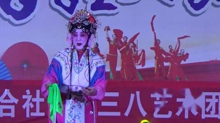 豫剧《红娘》选段 演唱者 李松环(2021年3月6日)
