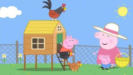 小猪佩奇:公鸡打鸣叫醒佩奇!鸡舍里果然有鸡蛋,佩奇有鸡蛋吃啦