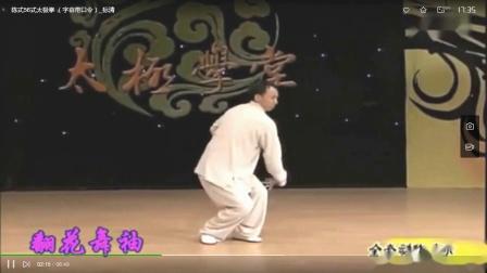 屈国峰56式陈氏太极拳第二段12-21