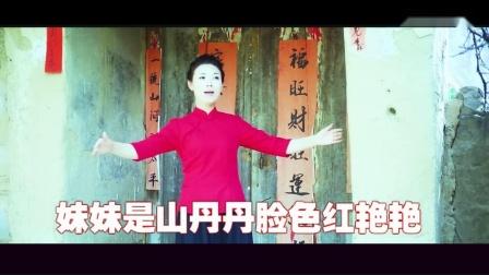 妹妹爱上庄稼汉(演唱)凤凤 消声伴奏 福厚合成.mpg