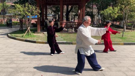传统杨氏八十五式太极拳 2021.03.25