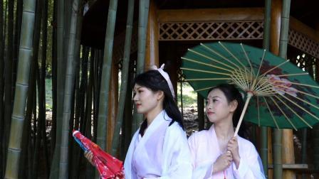 第五届青龙山茶花艺术节4月月3日开幕
