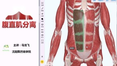 产后腹直肌分离的注意事项 不要着急修复腹直肌 沈阳飘然马龙飞