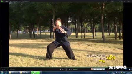 杨式85式太极拳    演练 杨建超