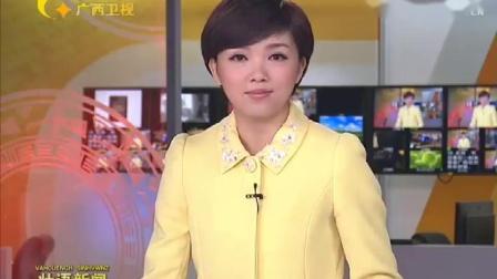 广西电视台卫星频道《壮语新闻》片头+片尾(2010年版&2014年版)