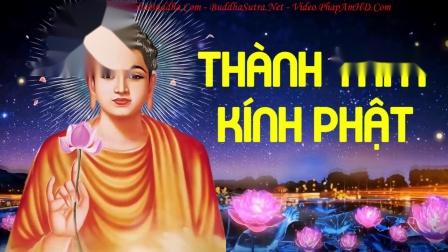 Nhạc Phật Dễ Ngủ 2021