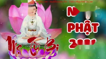 Nhạc Phật Giáo 2021 Hay Nhất  Nghe Để Phật Quan Âm Che Chở