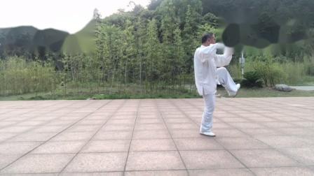 2021.03.31 练习杨式太极拳28式