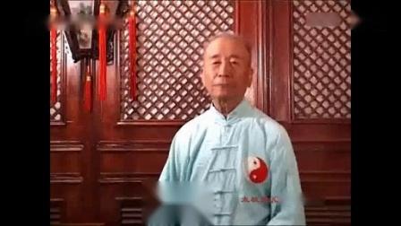 讲太极拳-_标清