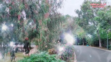 《余情未了》-演唱:魏新雨-大理巍山-东莞石排