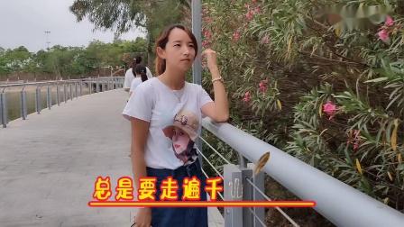 《最真的梦》-演唱:孙露-大理巍山-东莞石排