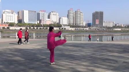 《42式太极剑》汉江公园太极队系列视频2--李海玲晨练