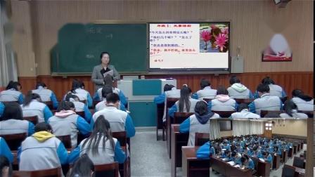 《荷花淀》(一等奖)-高中语文优质课(2020)如需更多课程请联系