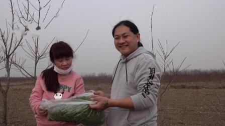 好久没吃过这种野菜了,朱坤今天收获还不少,回去蒸蒸吃