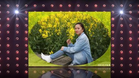 遍地菜花黄