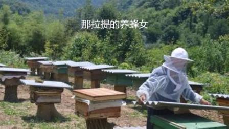 那拉提的养蜂女--听歌观景