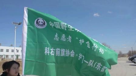 视频:科右前旗——为迁徙候鸟保驾护航